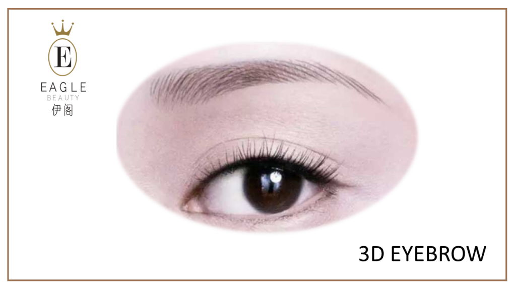 Eyebrow Embroidery 3D Image