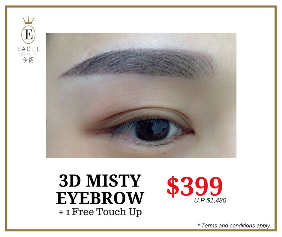 Jun & Jul '17 Eyebrow Promo - 3D Misty