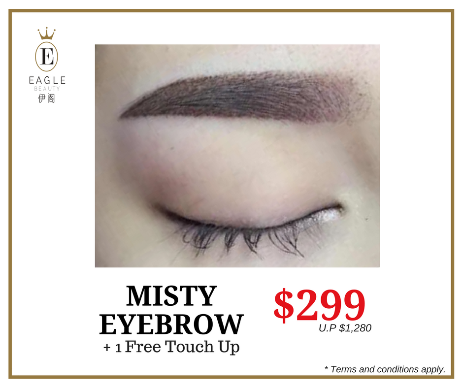 Jun & Jul '17 Eyebrow Promo - Misty