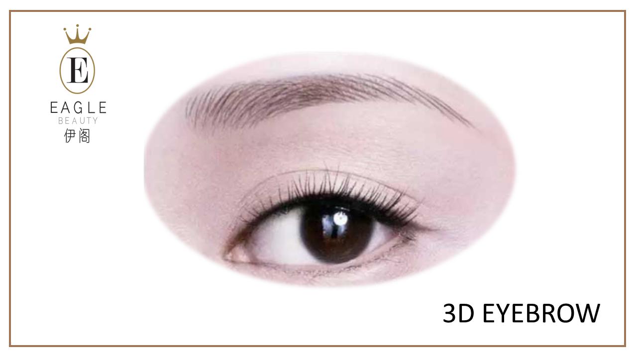 3d eyebrow sample