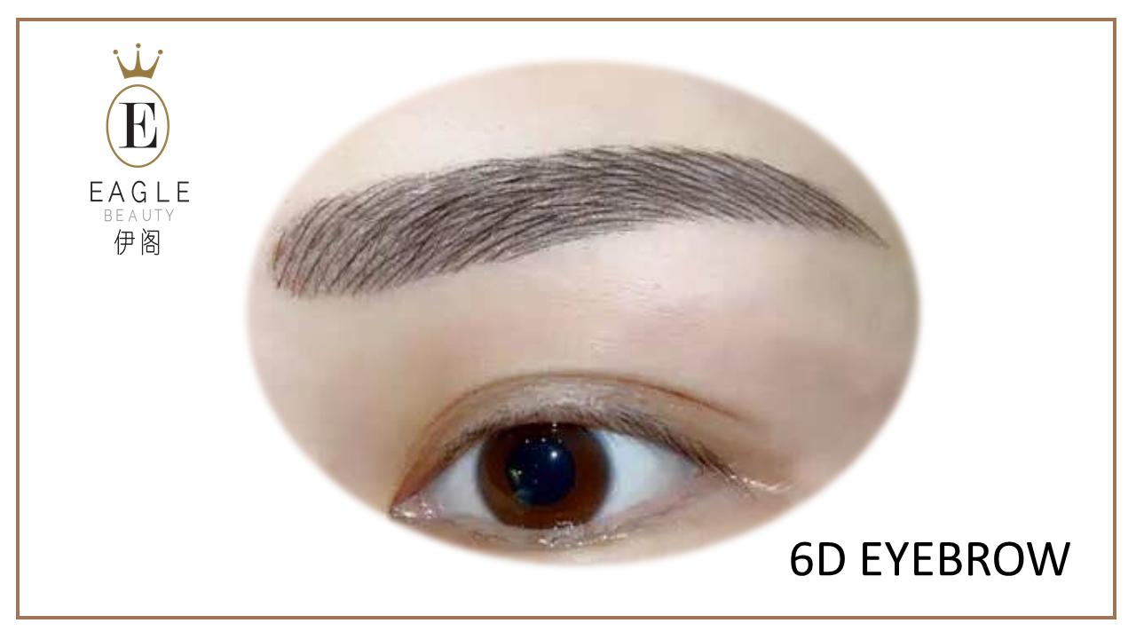 6d eyebrow sample